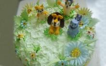 children_cake_13